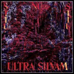 Ultra Silvam - Stiu Nu Stiu